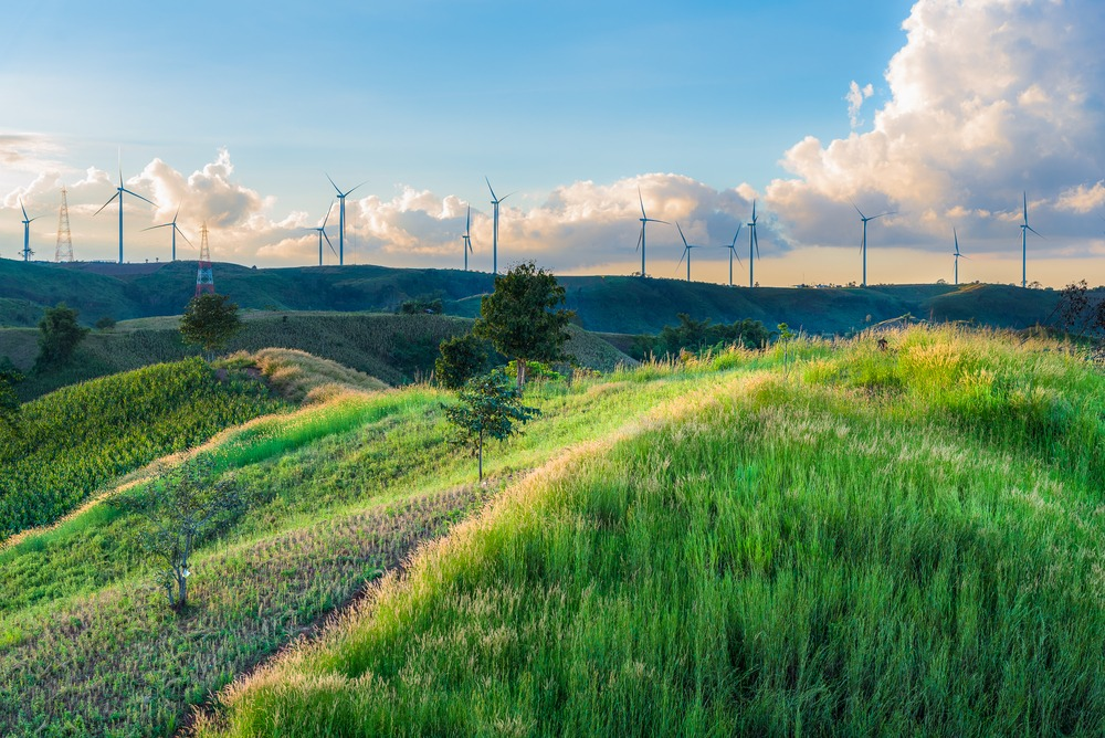 The wind power of the renewable energy